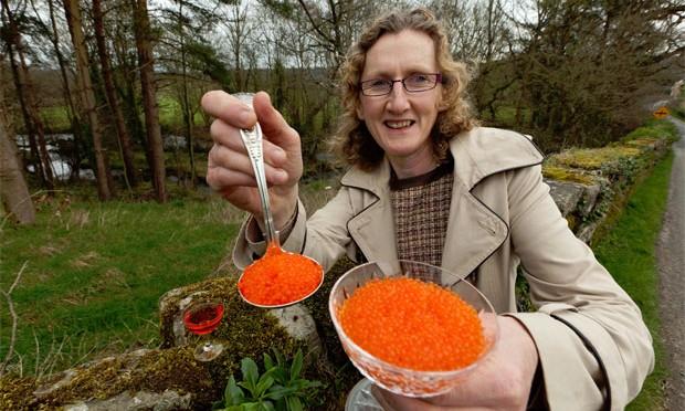 Goatsbridge Trout Caviar